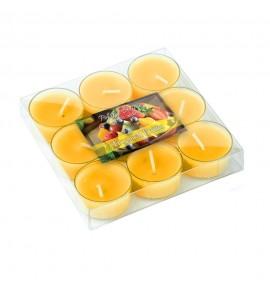 Tropical Fruits - OWOCE TROPIKALNE 9szt.- podgrzewacze zapachowe