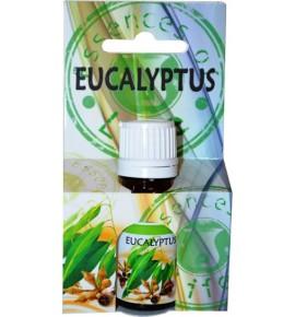 EUKALIPTUS 10ml - olejek zapachowy