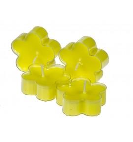 Kwiatek Mint Cream 4szt. - podgrzewacze kształty zapachowe