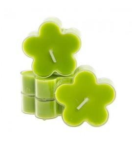 Kwiatek Green Apple 4szt. - podgrzewacze kształty zapachowe