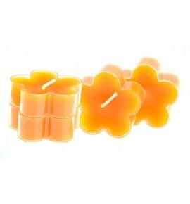 Kwiatek Orange Peel 4szt. - podgrzewacze kształty zapachowe