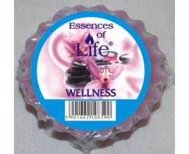 WELLNESS - wosk zapachowy